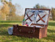 Cel mai practic cos de picnic